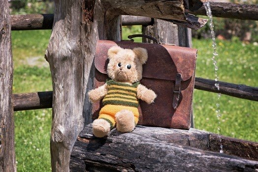 https://educfrance.org/wp-content/uploads/2020/03/teddy-teddy-bear-old-used-schoolbag-leather-case.jpg