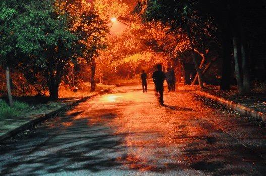 https://educfrance.org/wp-content/uploads/2020/04/lost-night-dark-forest-alone-lamp-darkness.jpg