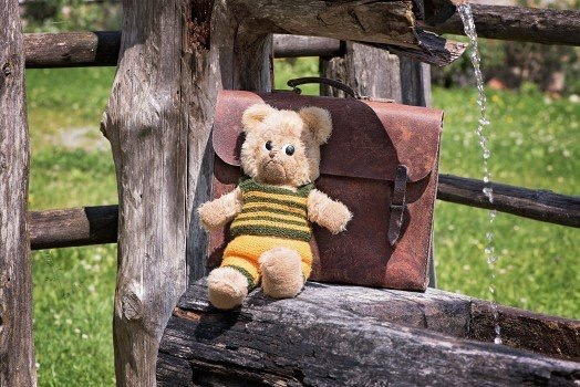 https://educfrance.org/wp-content/uploads/2020/04/teddy-teddy-bear-old-used-schoolbag-leather-case.jpg