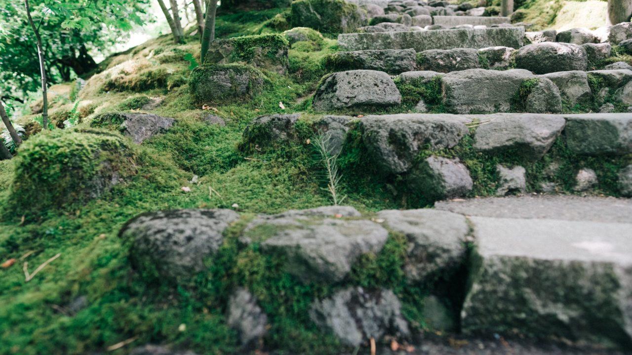 https://educfrance.org/wp-content/uploads/2020/05/zen-garden-stone-steps-1280x720.jpg