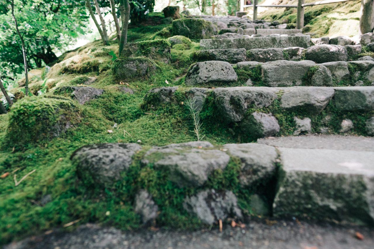 https://educfrance.org/wp-content/uploads/2020/05/zen-garden-stone-steps-1280x853.jpg