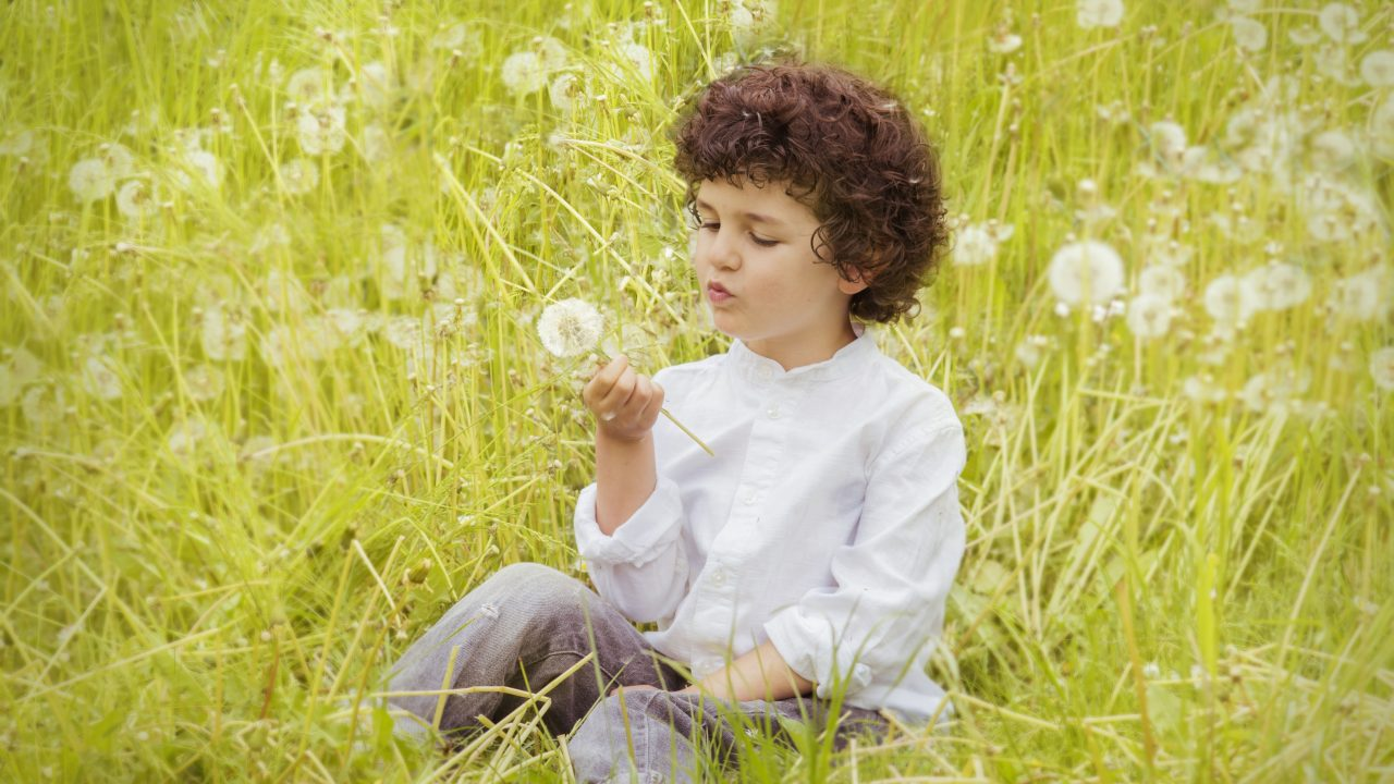 https://educfrance.org/wp-content/uploads/2020/07/girl-wearing-white-long-sleeve-top-holding-white-dandelion-160594-1280x720.jpg