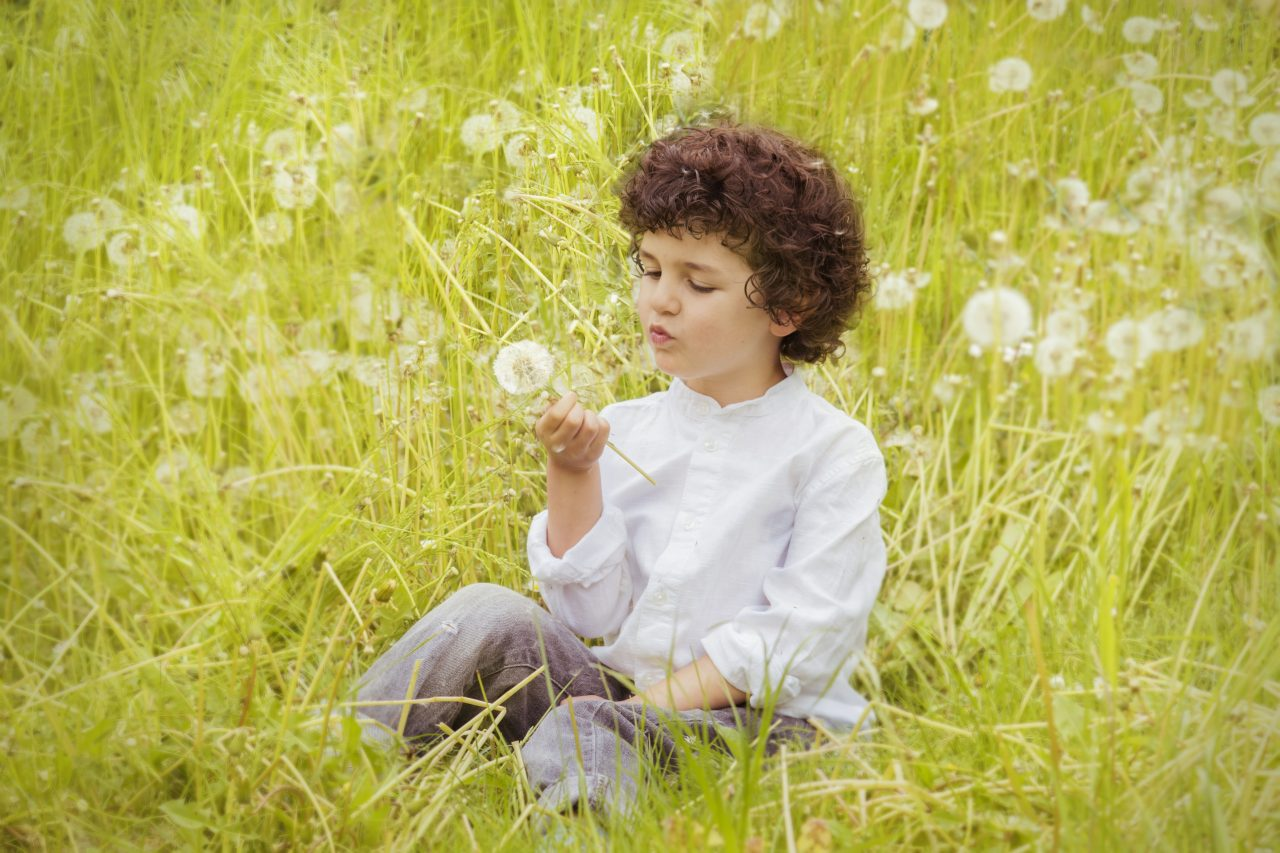 https://educfrance.org/wp-content/uploads/2020/07/girl-wearing-white-long-sleeve-top-holding-white-dandelion-160594-1280x853.jpg