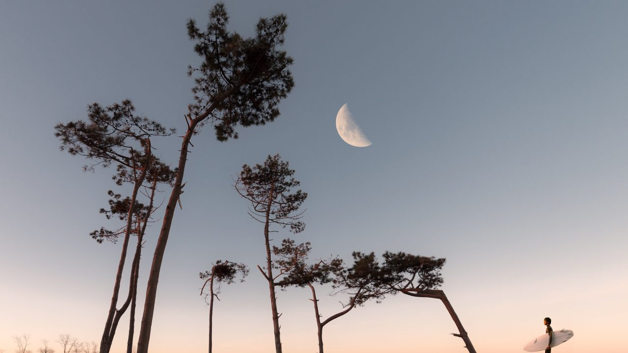 https://educfrance.org/wp-content/uploads/2020/07/half-moon-and-silhouette-of-trees-1242764-1280x720.jpg
