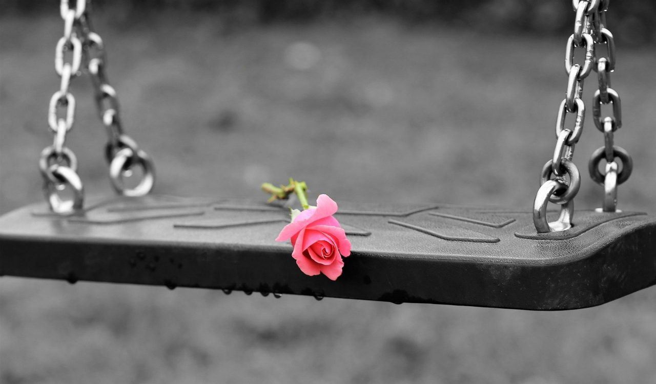 https://educfrance.org/wp-content/uploads/2021/04/pink-rose-on-empty-swing-3656894_1920-1280x751.jpg