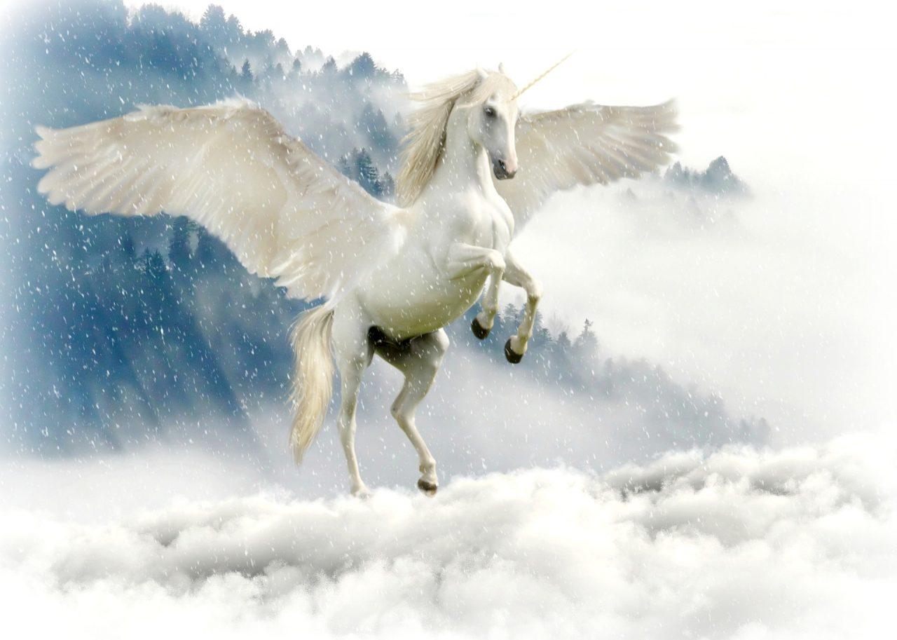 https://educfrance.org/wp-content/uploads/2021/05/unicorn-2875349_1920-1280x913.jpg